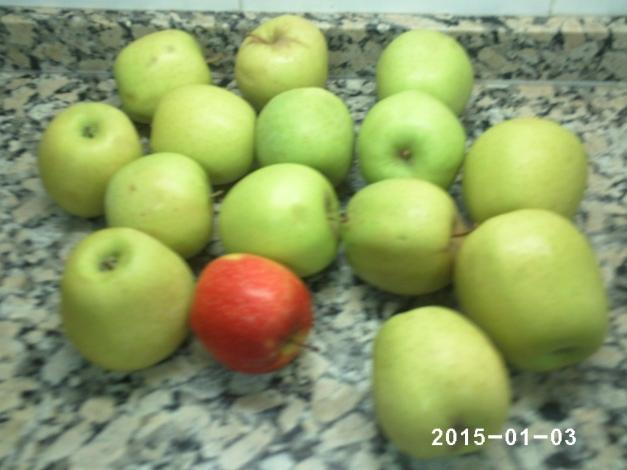 manzanas en el aviario